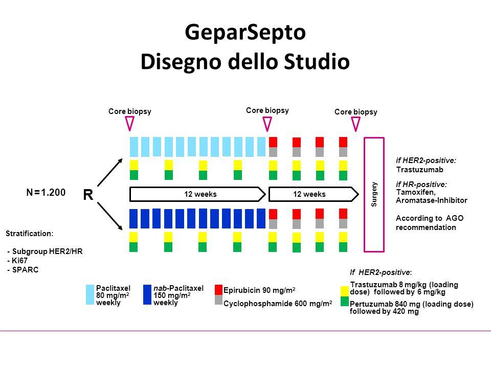 GeparSepto Disegno dello Studio Surgery 12 weeks N = 1.200 R Stratification: - Subgroup HER2/HR - Ki67 - SPARC Paclitaxel 80 mg/m 2 weekly nab-Paclita