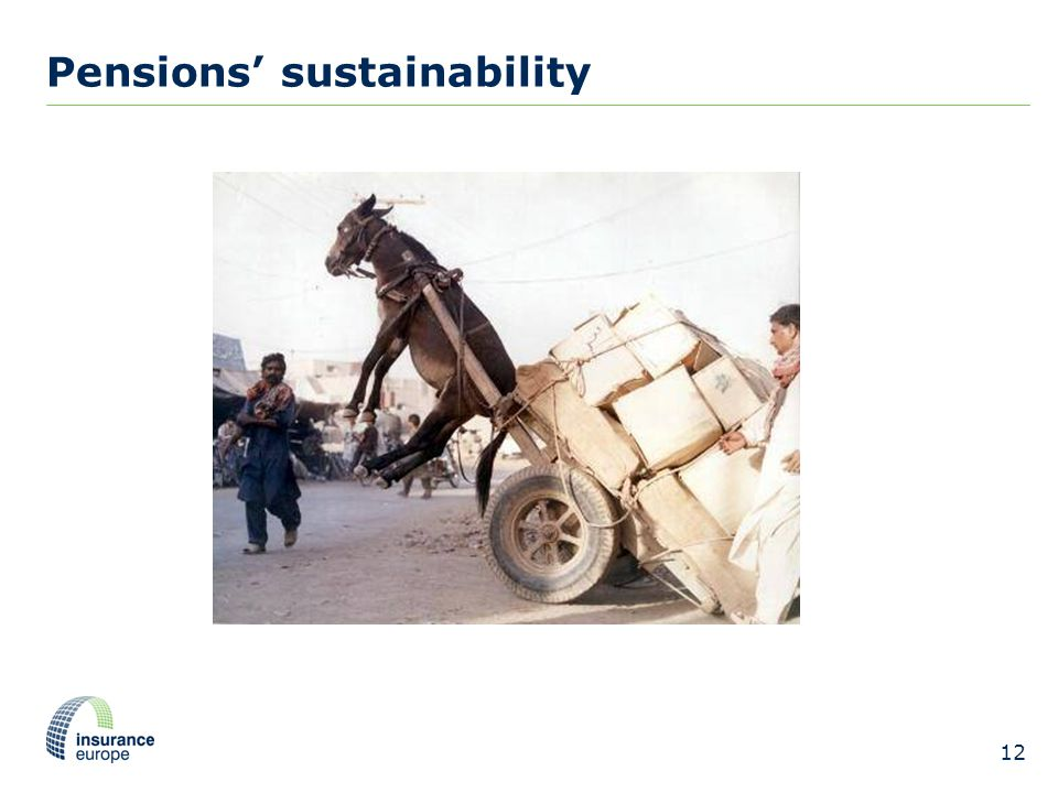 Pensions' sustainability 12