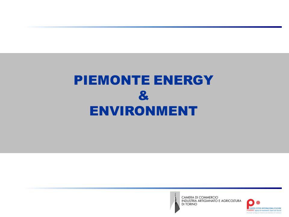 PIEMONTE ENERGY & ENVIRONMENT
