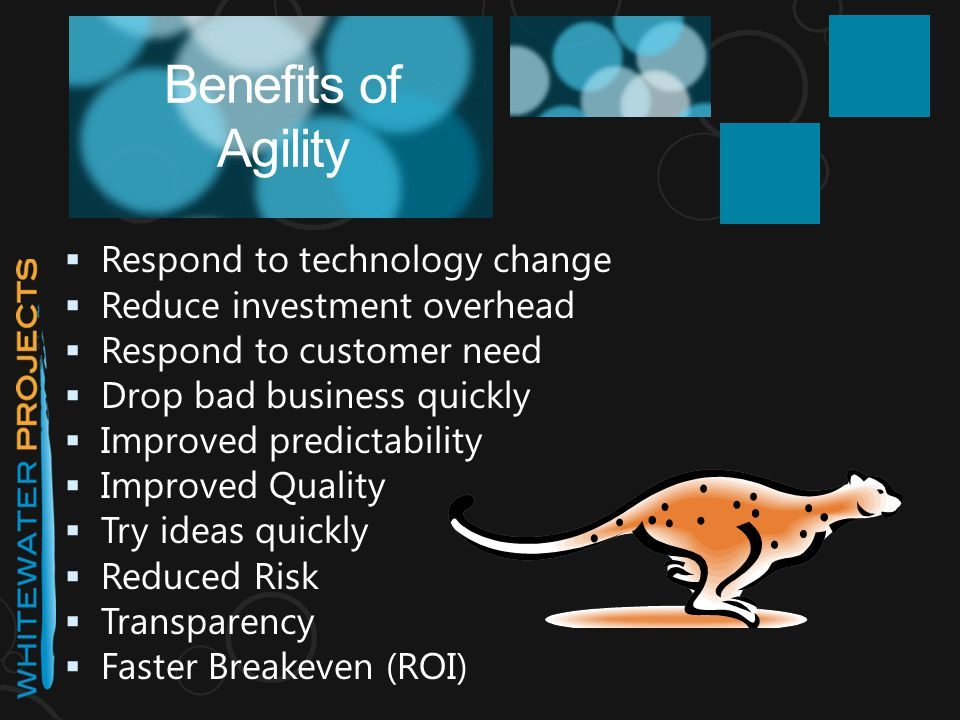  Respond to technology change  Reduce investment overhead  Respond to customer need  Drop bad business quickly  Improved predictability  Improve