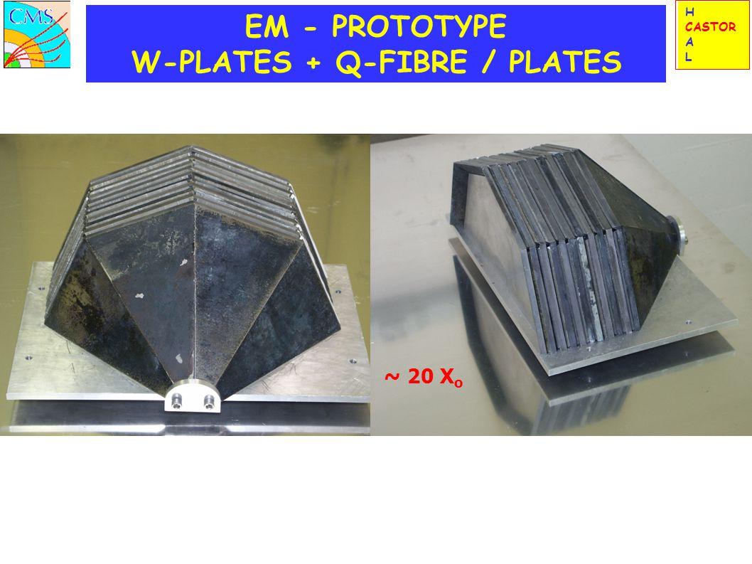 EM - PROTOTYPE W-PLATES + Q-FIBRE / PLATES ~ 20 X o H CASTOR A L
