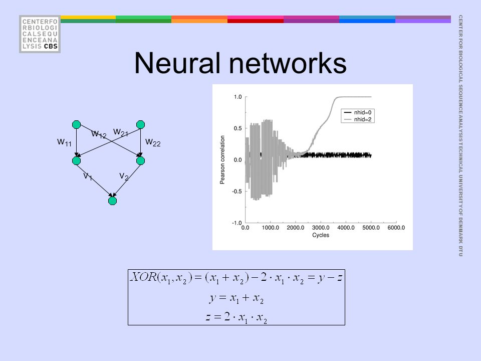 CENTER FOR BIOLOGICAL SEQUENCE ANALYSISTECHNICAL UNIVERSITY OF DENMARK DTU Neural networks w 11 w 12 v1v1 w 21 w 22 v2v2