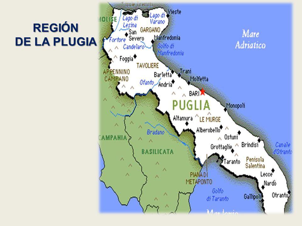 REGIÓN DE LA PLUGIA