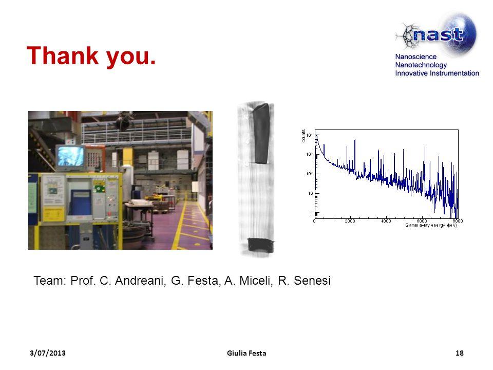3/07/2013Giulia Festa18 Thank you. Team: Prof. C. Andreani, G. Festa, A. Miceli, R. Senesi