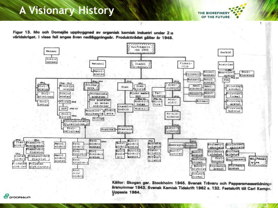 A Visionary History