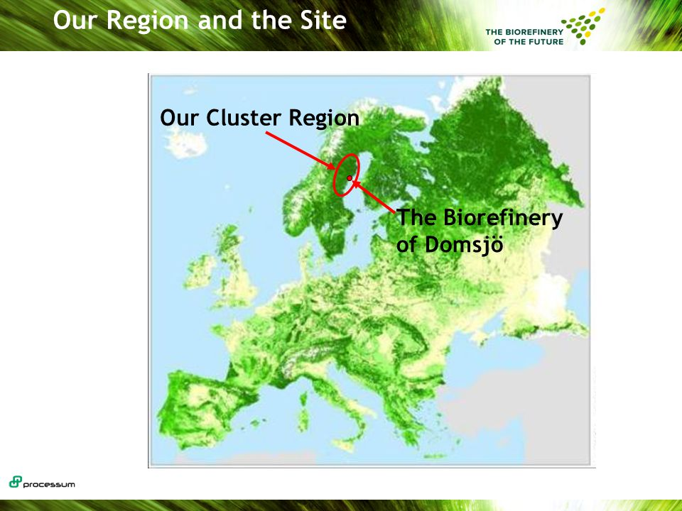 Our Region and the Site The Biorefinery of Domsjö Our Cluster Region