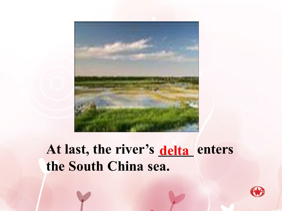 At last, the river's _____ enters the South China sea. delta