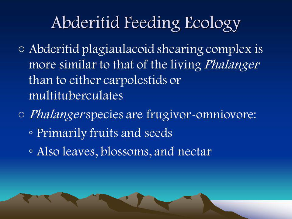 Abderitid Feeding Ecology ○ Abderitid plagiaulacoid shearing complex is more similar to that of the living Phalanger than to either carpolestids or multituberculates ○ Phalanger species are frugivor-omniovore: ◦ Primarily fruits and seeds ◦ Also leaves, blossoms, and nectar