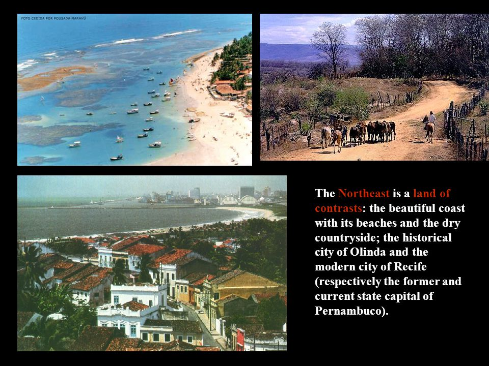 The Northeast is a land of contrasts: the beautiful coast with its beaches and the dry countryside; the historical city of Olinda and the modern city of Recife (respectively the former and current state capital of Pernambuco).
