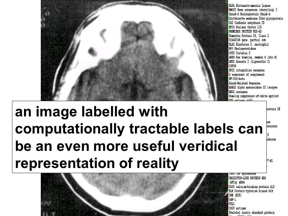 19 an image labelled with computationally tractable labels can be an even more useful veridical representation of reality