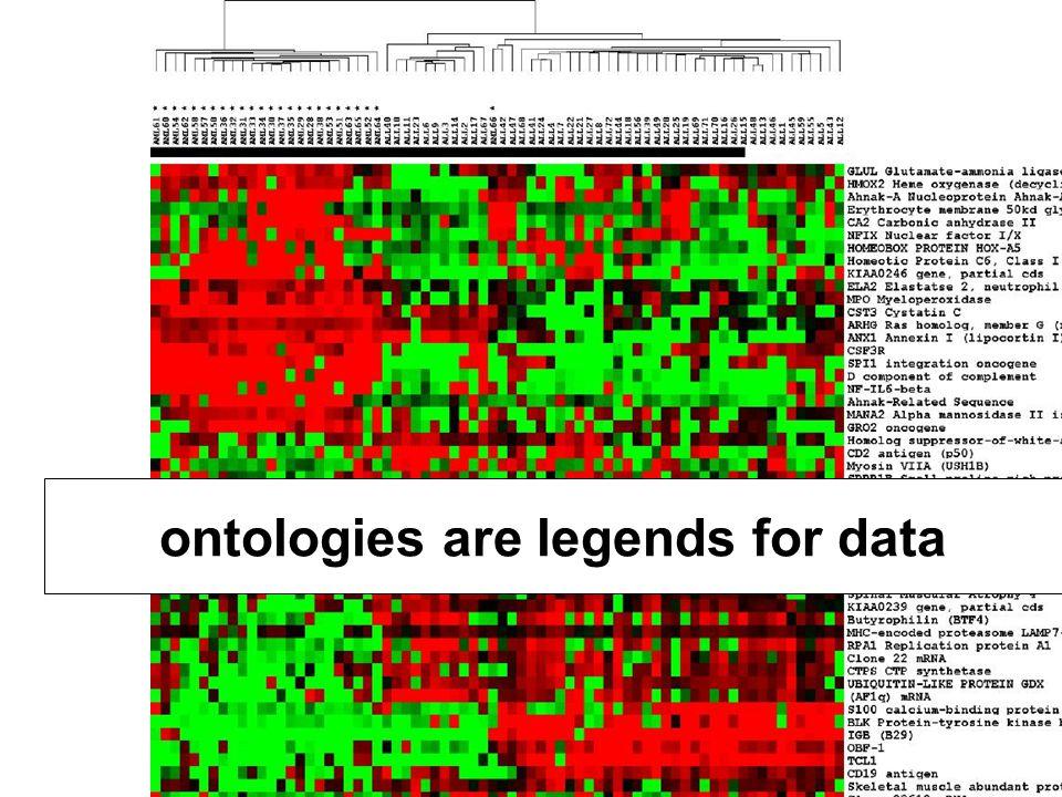 28 Ontology = A Representation of types