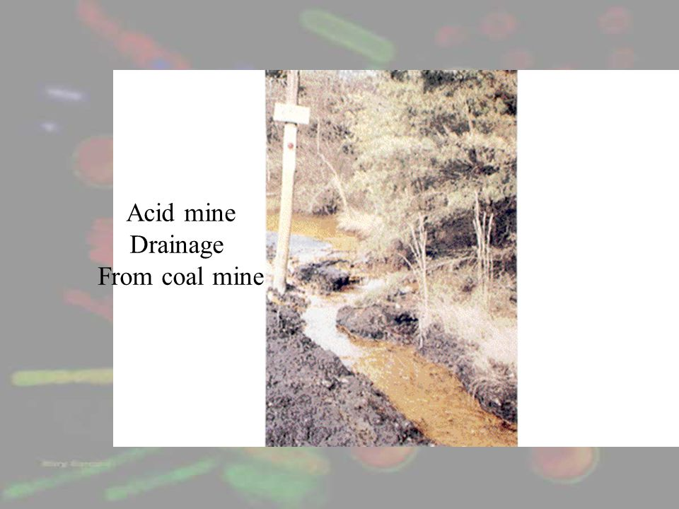 Acid mine Drainage From coal mine