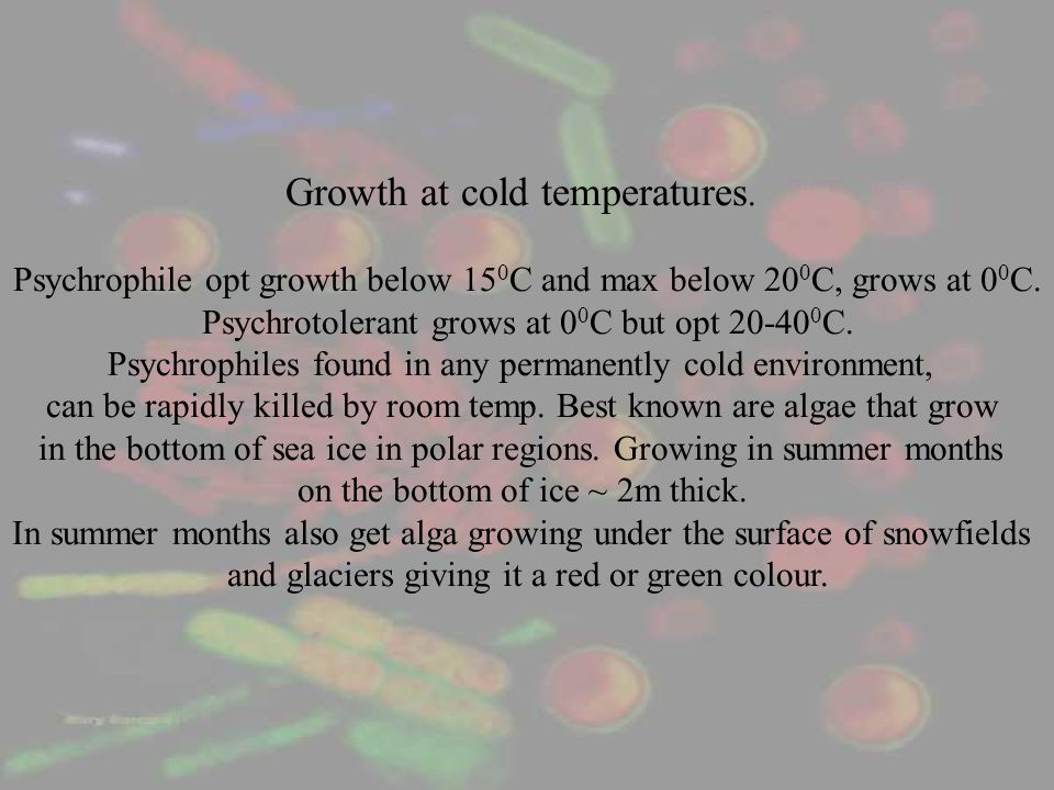Growth at cold temperatures.