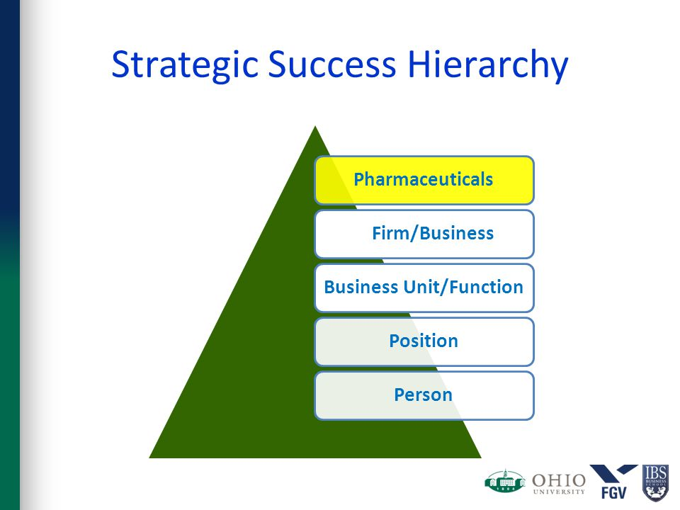Strategic Success Hierarchy Pharmaceuticals Firm/BusinessBusiness Unit/FunctionPositionPerson