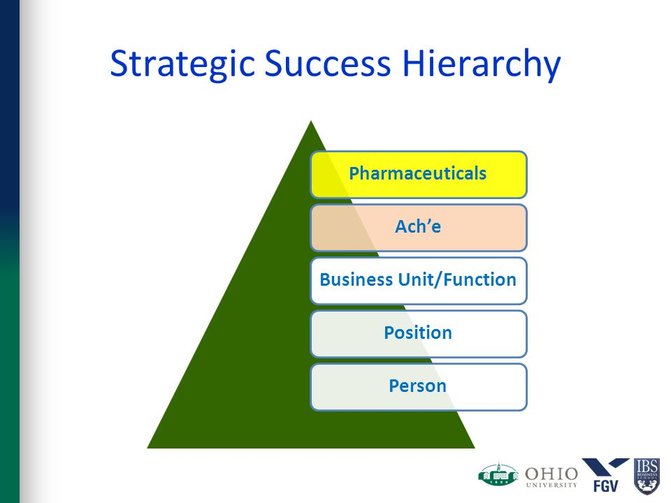 Strategic Success Hierarchy PharmaceuticalsAch'eBusiness Unit/FunctionPositionPerson