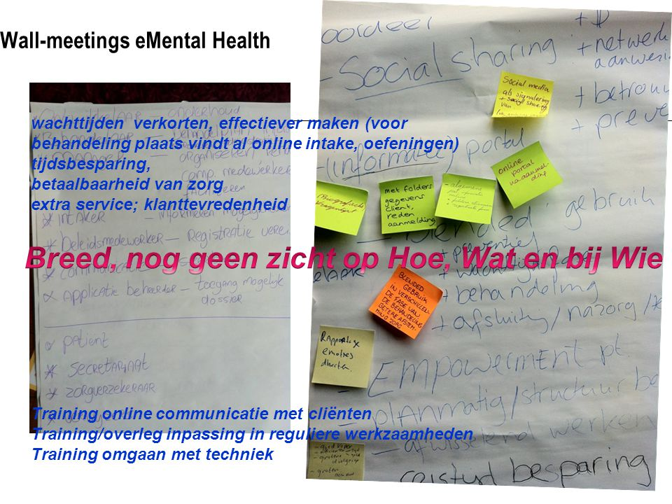 Wall-meetings eMental Health Training online communicatie met cliënten Training/overleg inpassing in reguliere werkzaamheden Training omgaan met techn