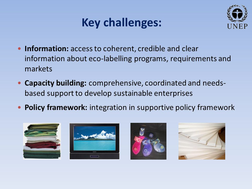 Key challenges: Information: access to coherent, credible and clear information about eco-labelling programs, requirements and markets Capacity building: comprehensive, coordinated and needs- based support to develop sustainable enterprises Policy framework: integration in supportive policy framework