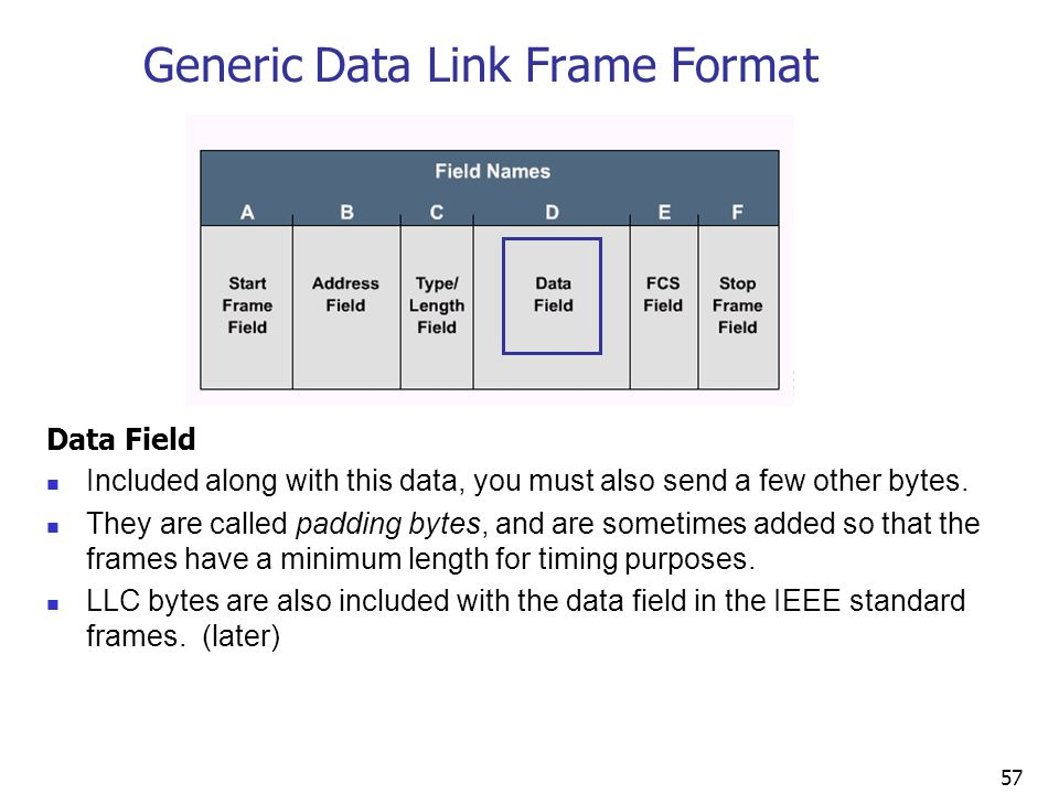 57 Generic Data Link Frame Format Data Field Included along with this data, you must also send a few other bytes.