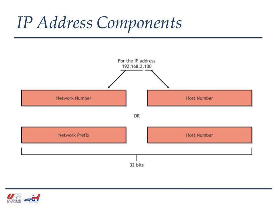 IP Address Components