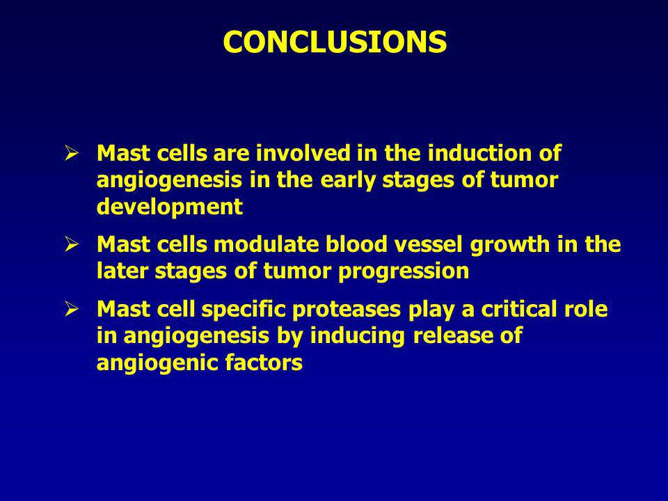 CONCLUSIONS  Mast cells are involved in the induction of angiogenesis in the early stages of tumor development  Mast cells modulate blood vessel gro