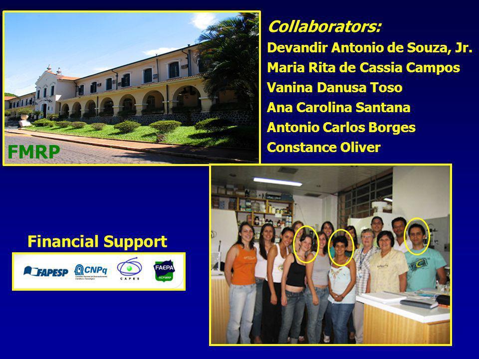 FMRP Financial Support Collaborators: Devandir Antonio de Souza, Jr.