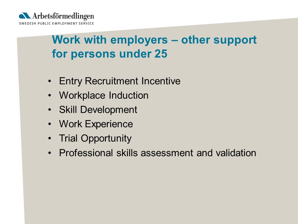 Work with employers – other support for persons under 25 Entry Recruitment Incentive Workplace Induction Skill Development Work Experience Trial Opportunity Professional skills assessment and validation