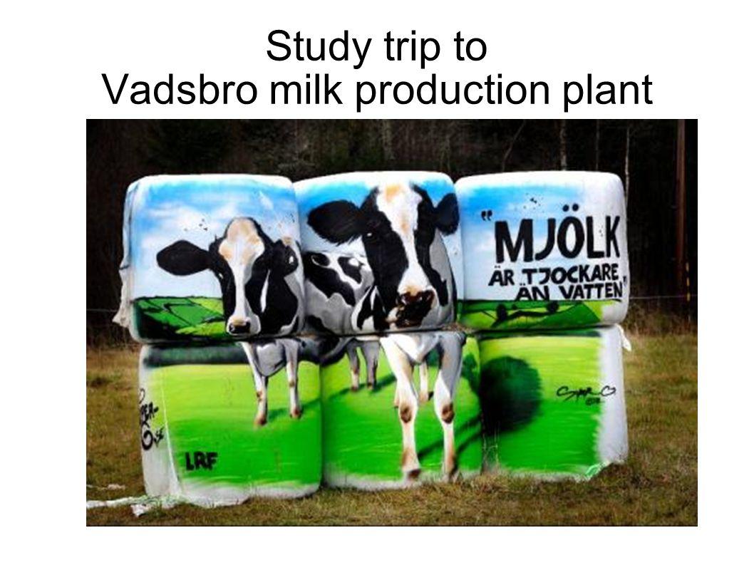 Study trip to Vadsbro milk production plant