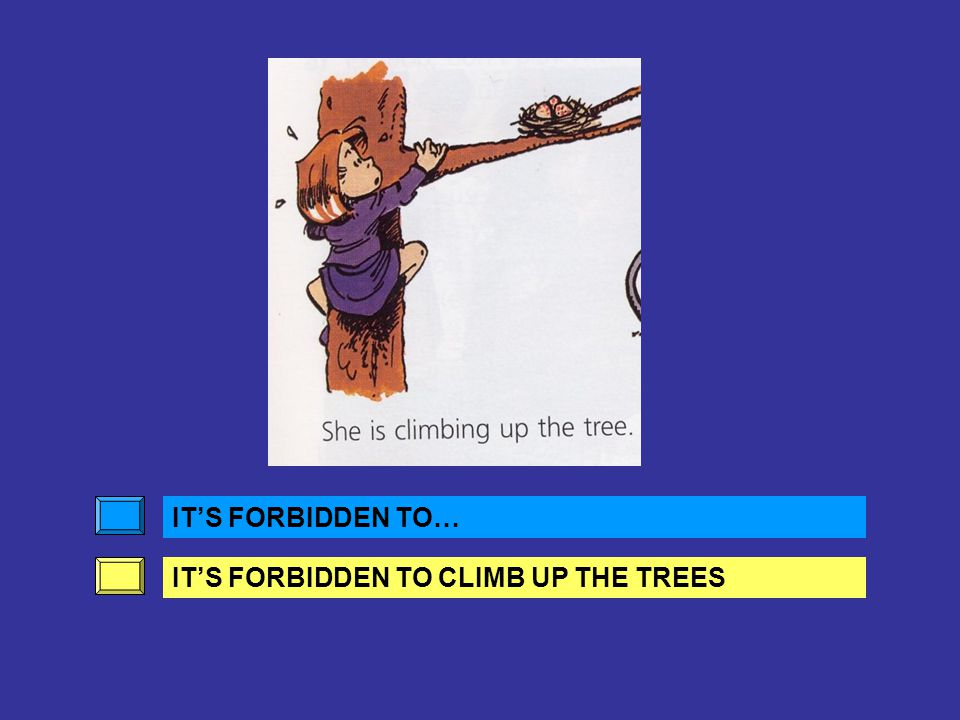 IT'S FORBIDDEN TO… IT'S FORBIDDEN TO RIDE A BIKE