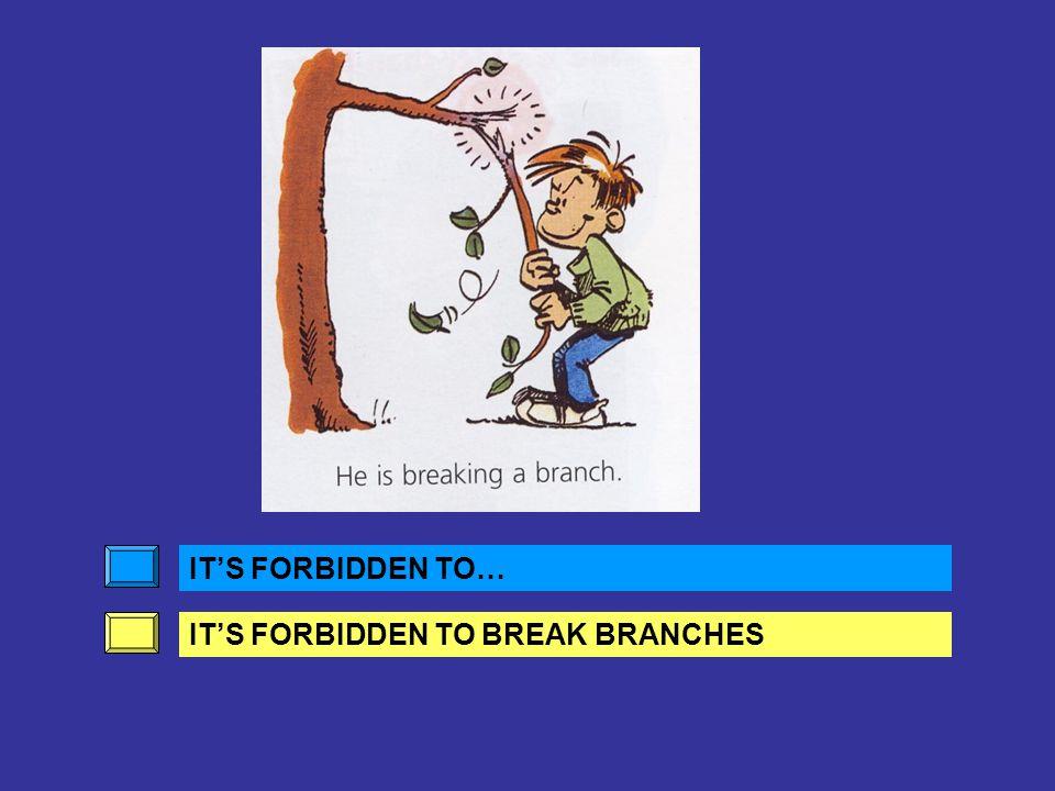 IT'S FORBIDDEN TO… IT'S FORBIDDEN TO BREAK BRANCHES