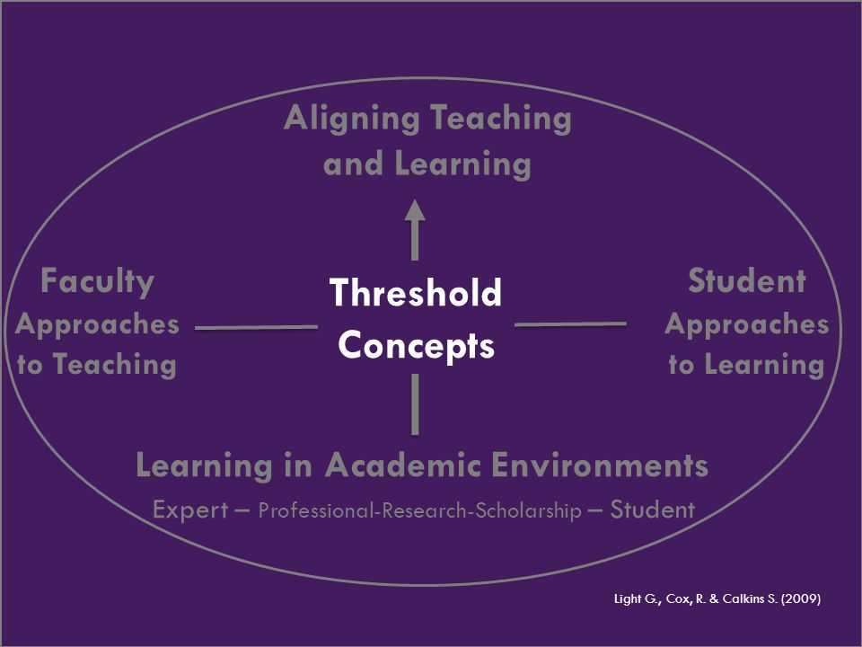 Aligning Teaching and Learning Learning in Academic Environments Expert – Professional-Research-Scholarship – Student Faculty Approaches to Teaching L