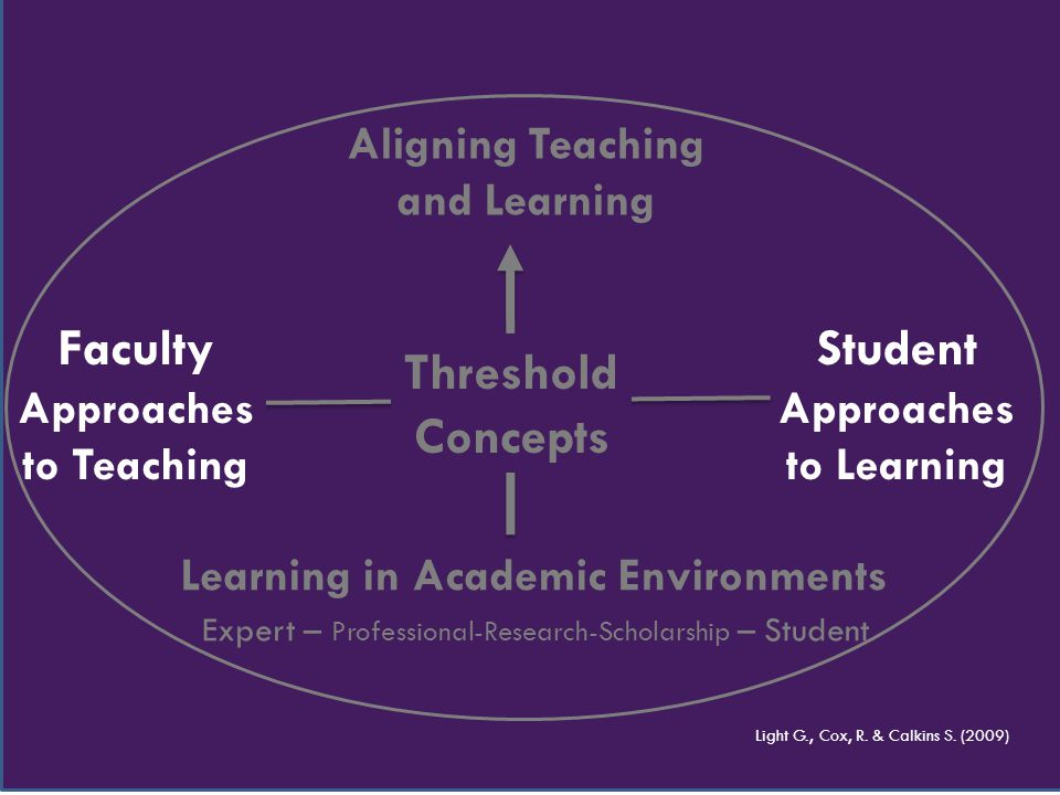 Aligning Teaching and Learning Learning in Academic Environments Expert – Professional-Research-Scholarship – Student Light G., Cox, R. & Calkins S. (