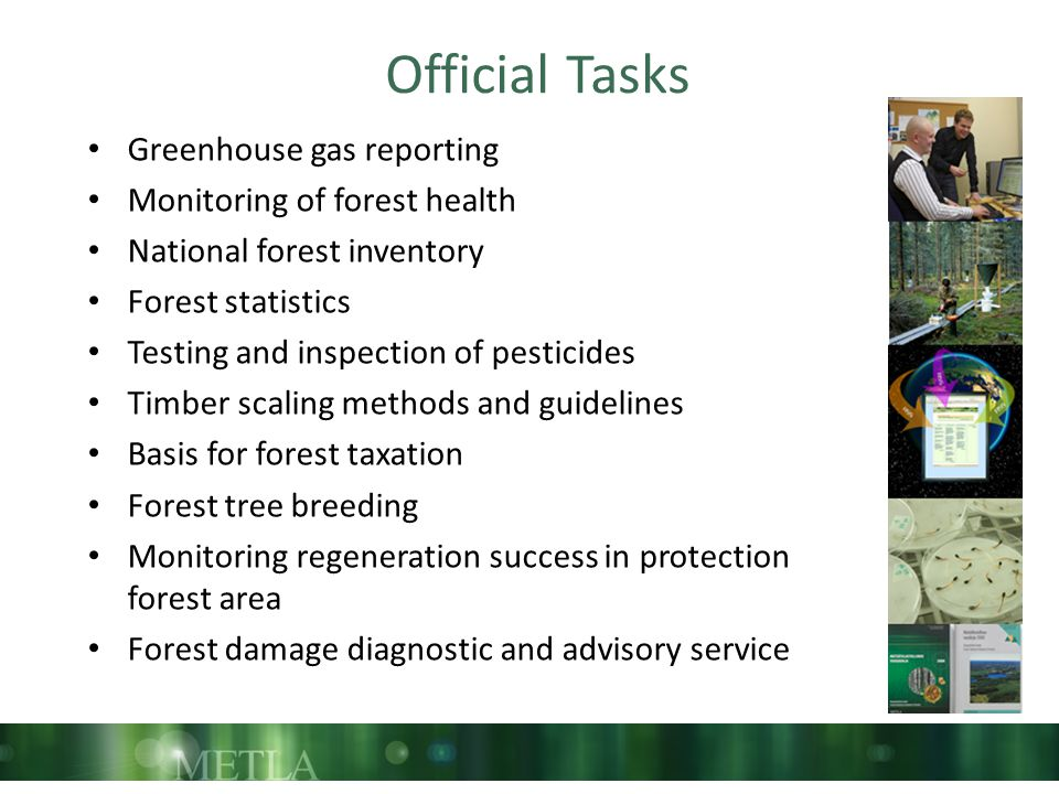 Official Tasks Greenhouse gas reporting Monitoring of forest health National forest inventory Forest statistics Testing and inspection of pesticides Timber scaling methods and guidelines Basis for forest taxation Forest tree breeding Monitoring regeneration success in protection forest area Forest damage diagnostic and advisory service