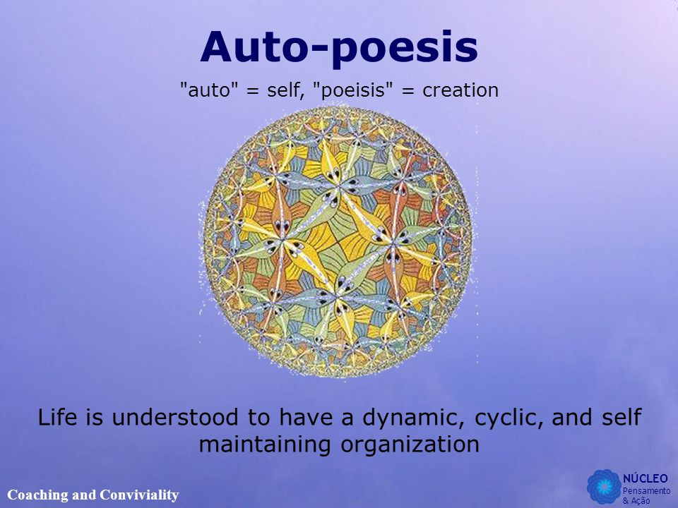 NÚCLEO Pensamento & Ação Coaching and Conviviality Auto-poesis auto = self, poeisis = creation Life is understood to have a dynamic, cyclic, and self maintaining organization