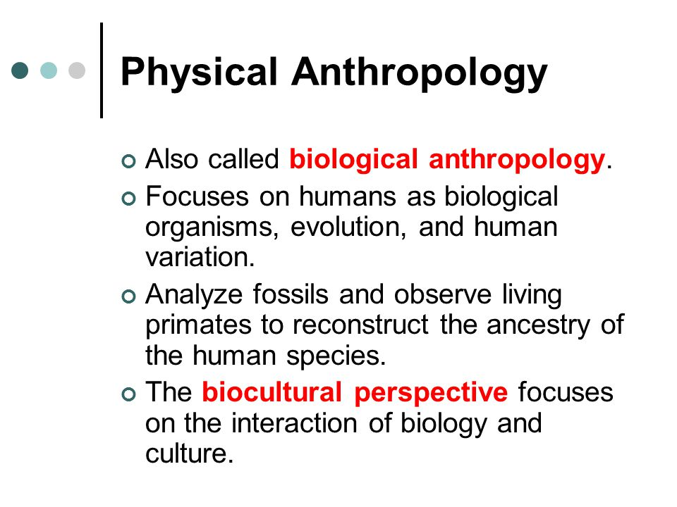 Physical Anthropology Also called biological anthropology. Focuses on humans as biological organisms, evolution, and human variation. Analyze fossils