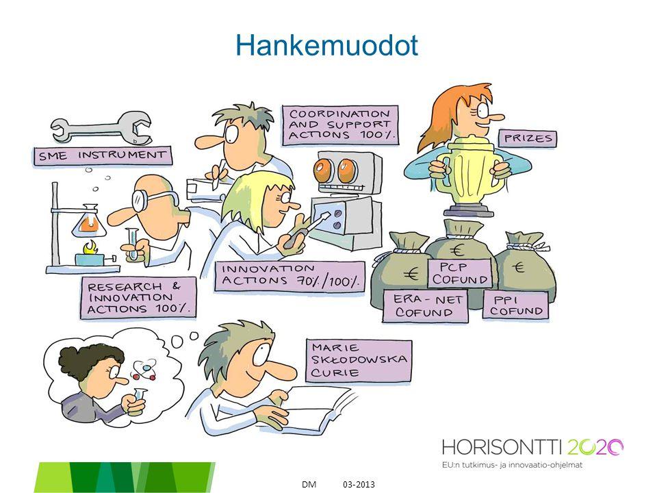 Hankemuodot 03-2013DM