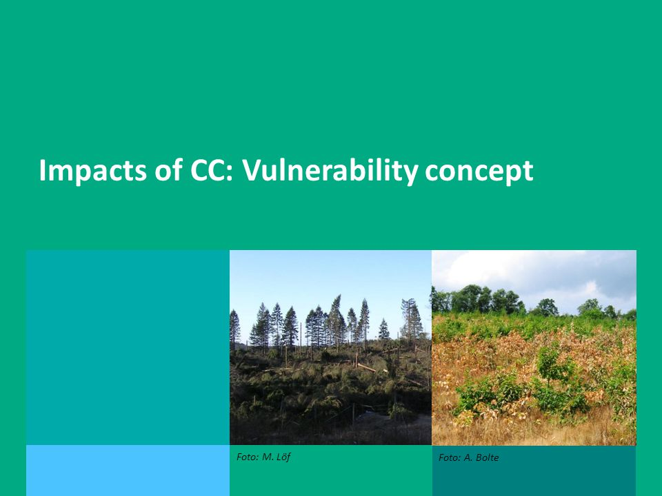 Andreas Bolte, Peter Spathelf, Ernst van der Maaten Impacts of CC: Vulnerability concept Foto: M.