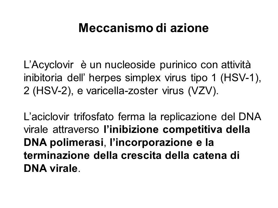 L'Acyclovir è un nucleoside purinico con attività inibitoria dell' herpes simplex virus tipo 1 (HSV-1), 2 (HSV-2), e varicella-zoster virus (VZV).