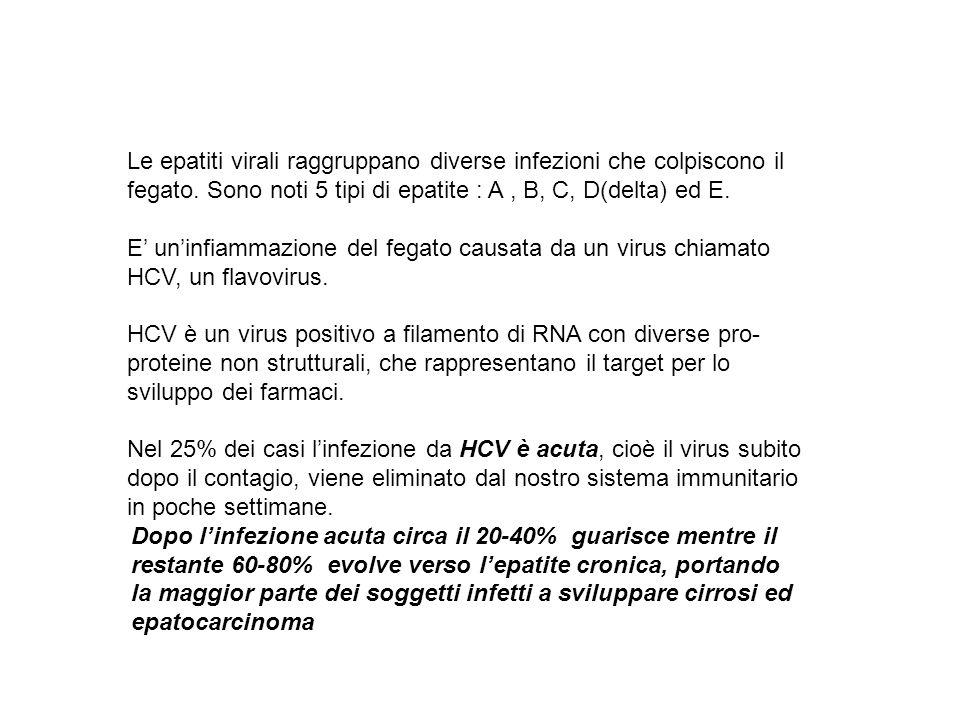 Le epatiti virali raggruppano diverse infezioni che colpiscono il fegato.