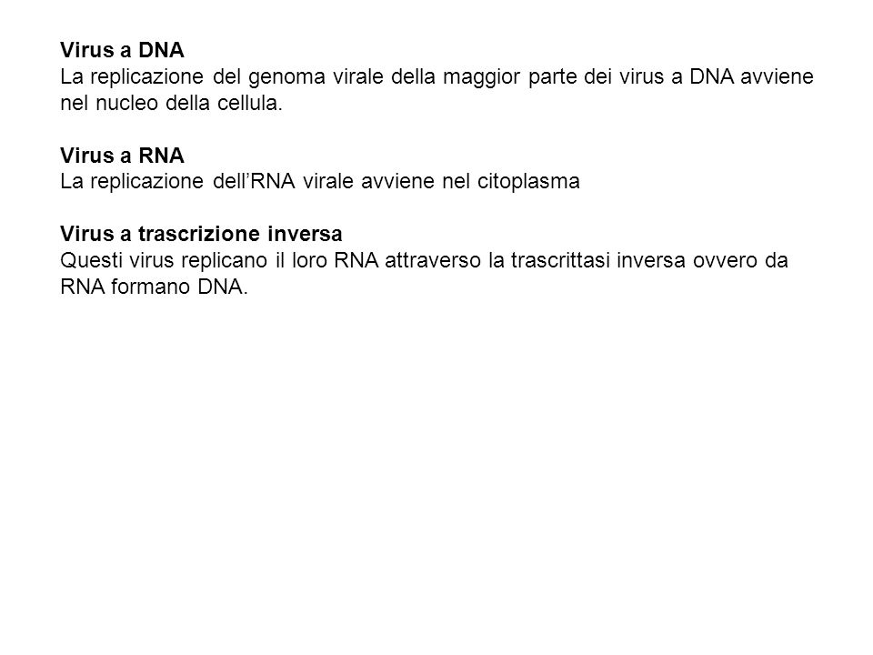 Struttura chimica Nucleoside/nucleotide