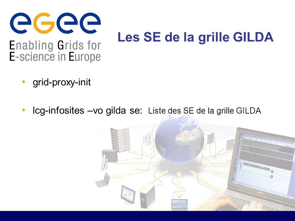 Les SE de la grille GILDA grid-proxy-init lcg-infosites –vo gilda se: Liste des SE de la grille GILDA