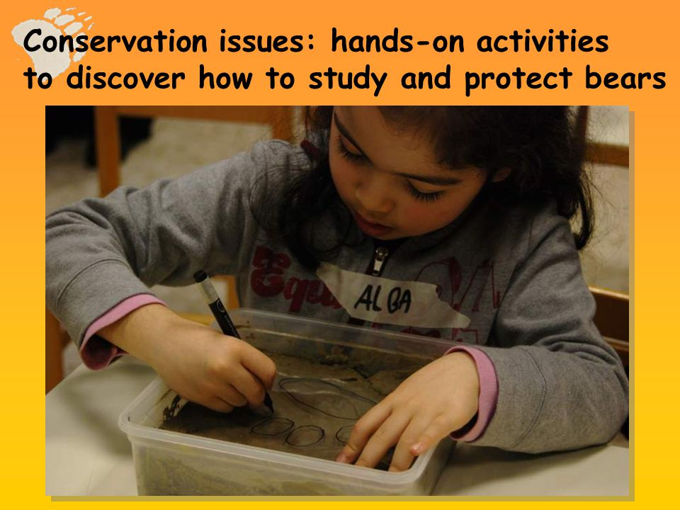 Conservation issues: hands-on activities to discover how to study and protect bears