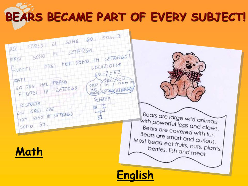 Math English BEARS BECAME PART OF EVERY SUBJECT!
