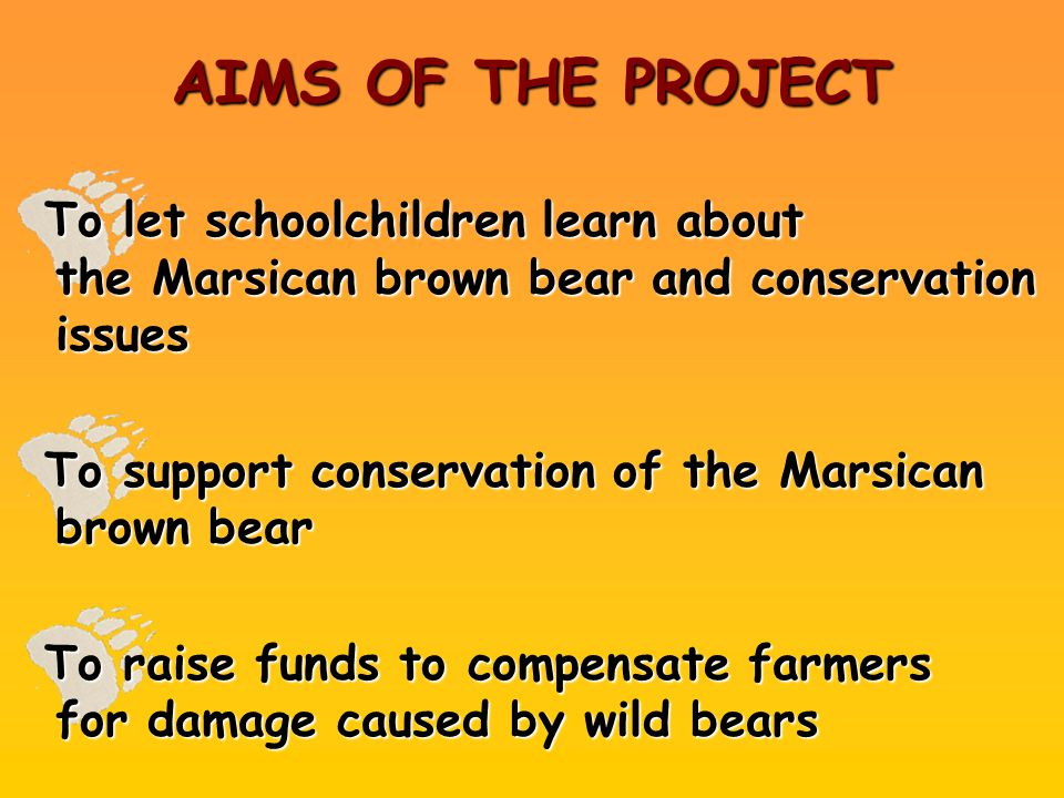 AIMS OF THE PROJECT To let schoolchildren learn about the Marsican brown bear and conservation issues To support conservation of the Marsican brown be