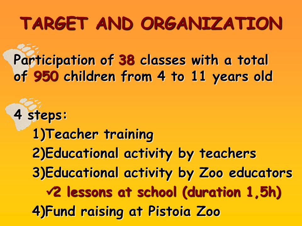 TARGET AND ORGANIZATION Participation of38 classes with a total of 950 children from 4 to 11 years old Participation of 38 classes with a total of 950 children from 4 to 11 years old 4 steps: 1)Teacher training 2)Educational activity by teachers 3)Educational activity by Zoo educators 2 lessons at school (duration 1,5h) 2 lessons at school (duration 1,5h) 4)Fund raising at Pistoia Zoo