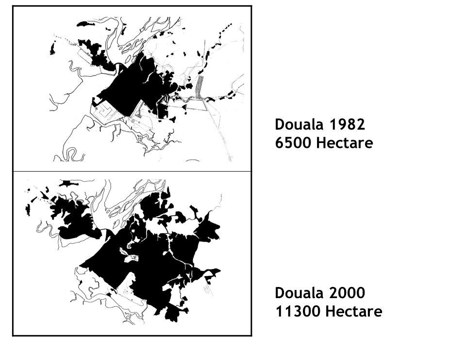 Douala 1982 6500 Hectare Douala 2000 11300 Hectare
