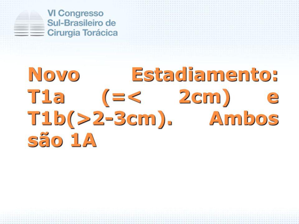 Novo Estadiamento: T1a (= 2-3cm). Ambos são 1A