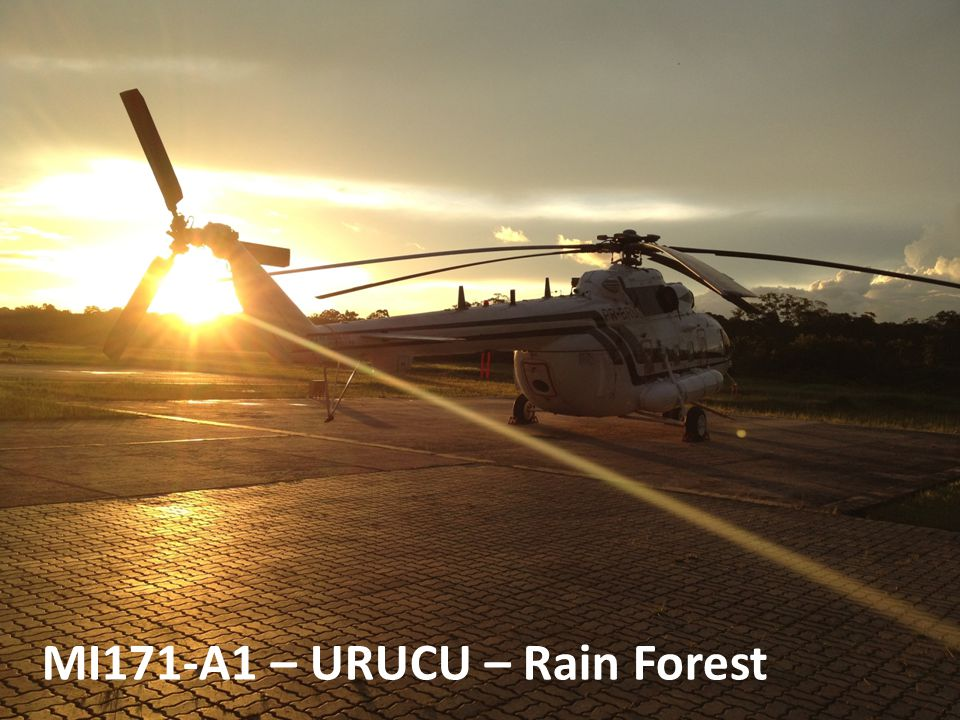 MI171-A1 – URUCU – Rain Forest