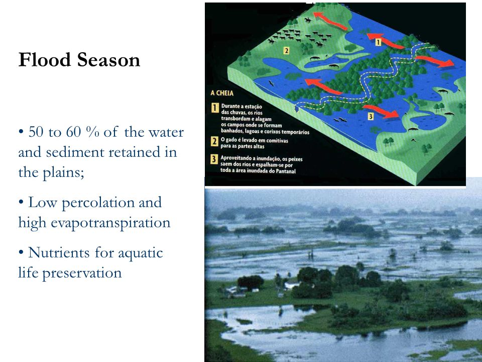 Flood Season 50 to 60 % of the water and sediment retained in the plains; Low percolation and high evapotranspiration Nutrients for aquatic life preservation