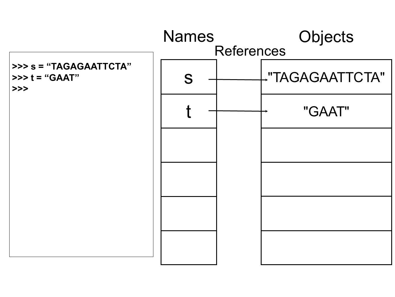 TAGAGAATTCTA GAAT Objects s t Names References >>> s = TAGAGAATTCTA >>> t = GAAT >>>