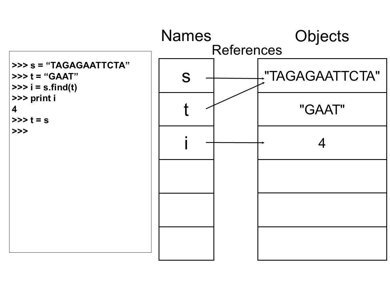 TAGAGAATTCTA GAAT 4 Objects s t i Names References >>> s = TAGAGAATTCTA >>> t = GAAT >>> i = s.find(t) >>> print i 4 >>> t = s >>>